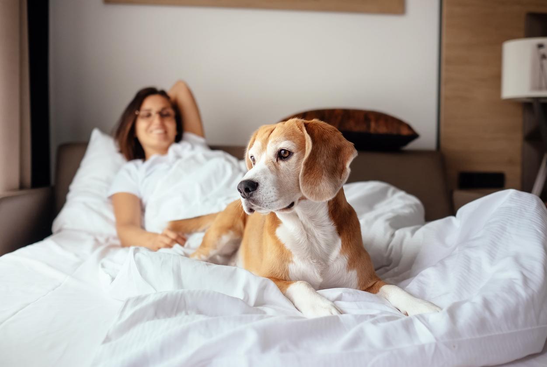 Woman-enjoying-dog-friendly-hotel