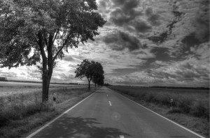 content_highway