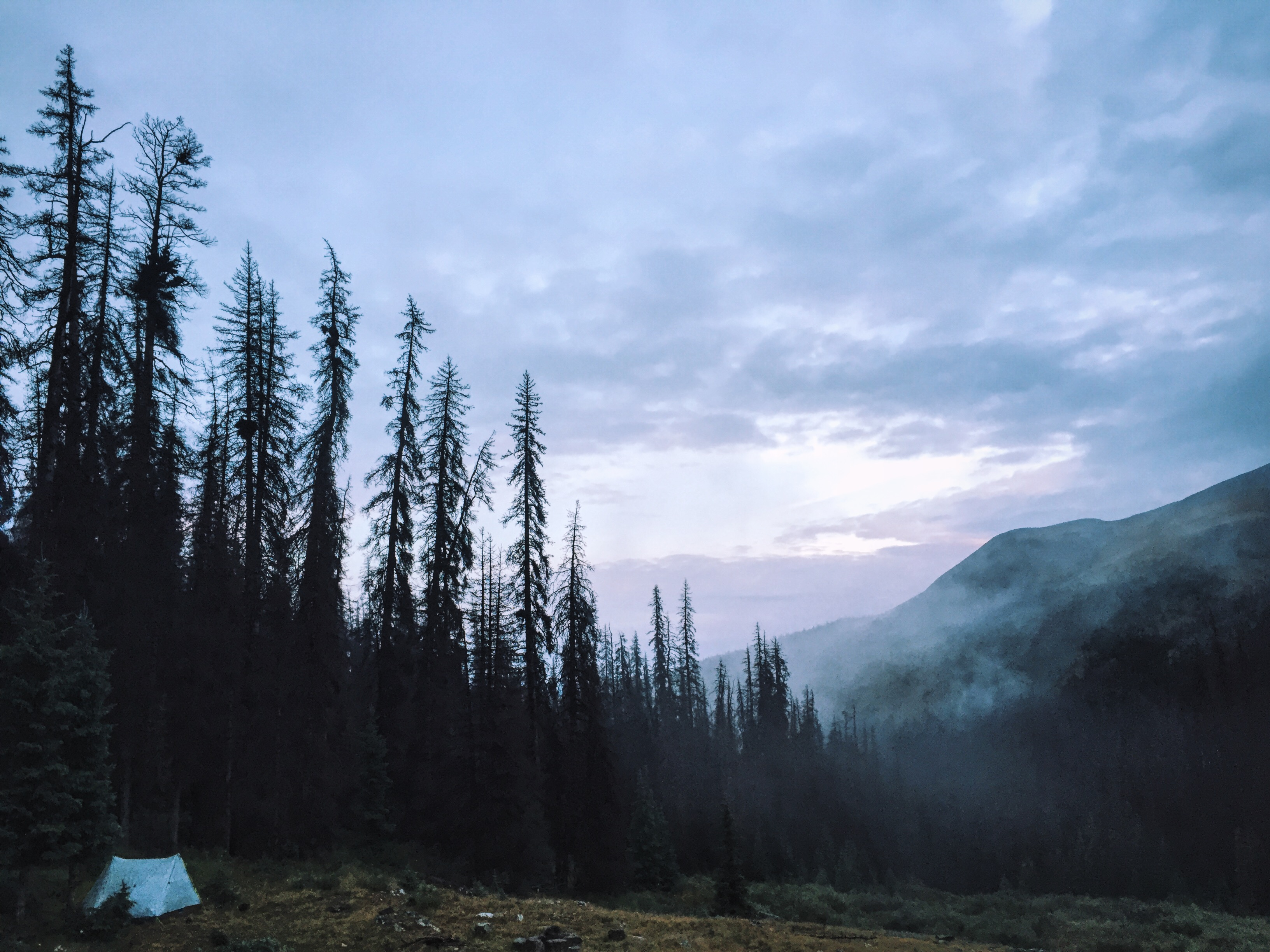Tent-camping-in-the-mountains-on-foggy-morning