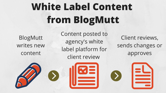 steps-of-White-Label-Content-Writing-from-blogmutt