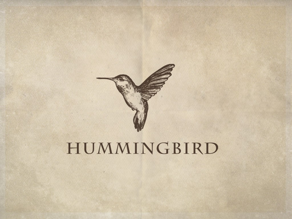 99designs hummingbird ultrastjarna