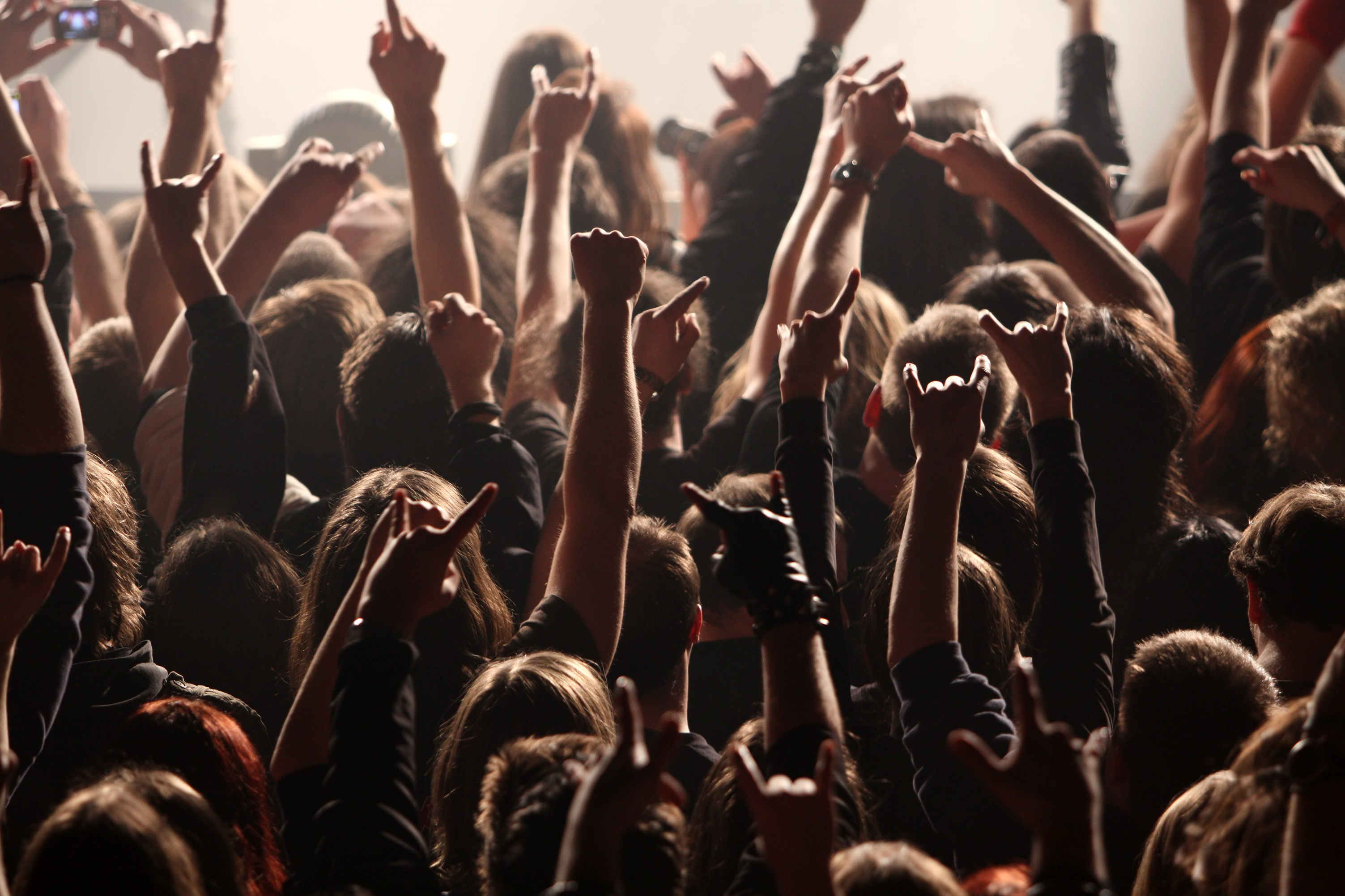 A crowd of people hold their arms in the air at a rock concert