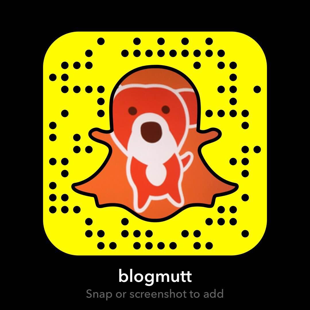 blogmutt-snapchat