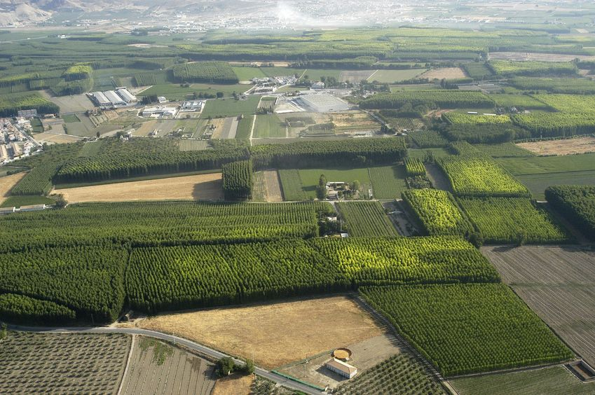 example_post-2-agriculture-fields