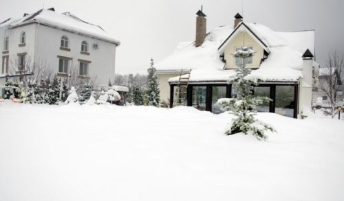 snowy-homes-with-pine-trees-around