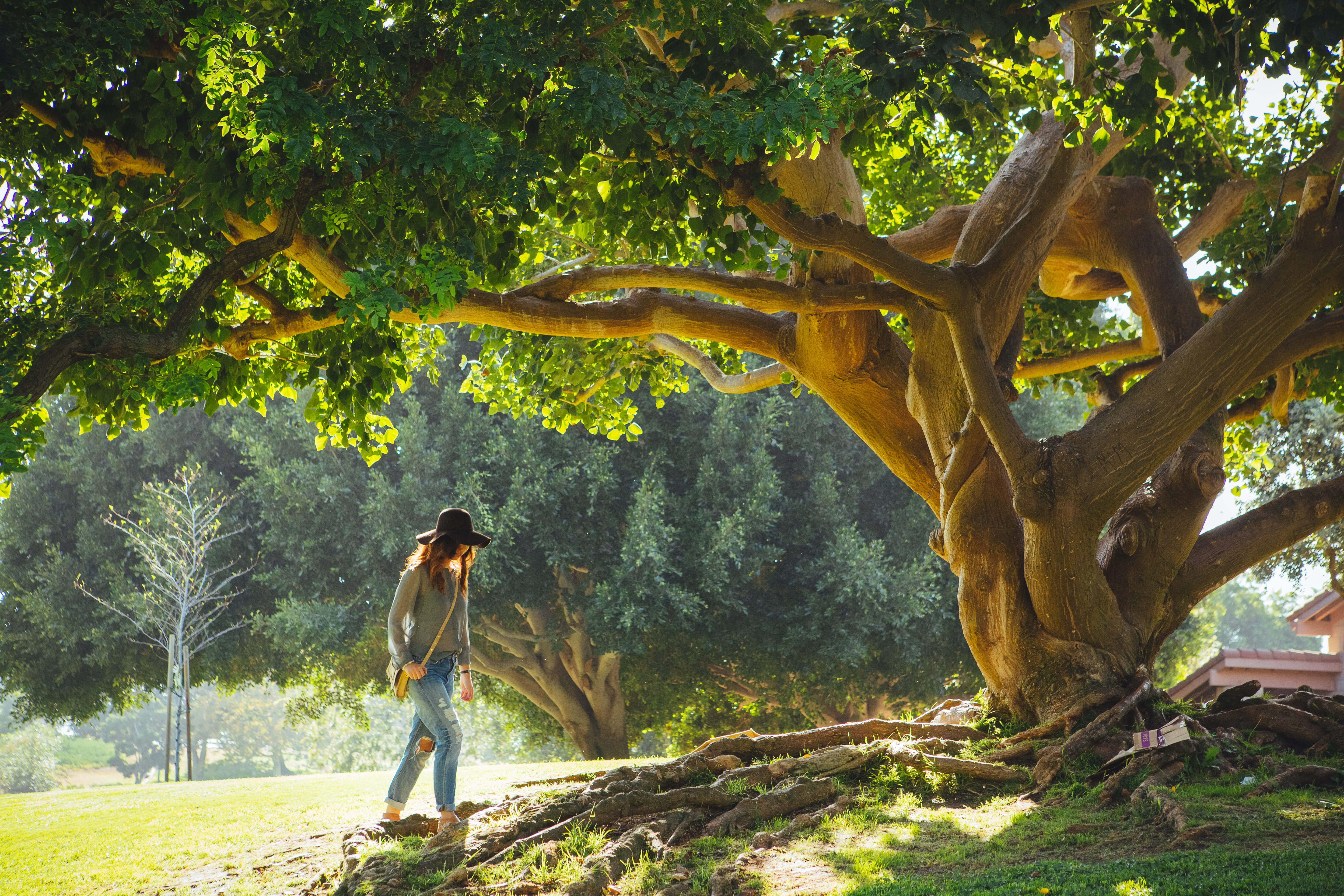 woman-walking-by-exotic-tree-getting-in-touch-with-nature