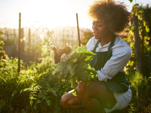 african american woman in community garden